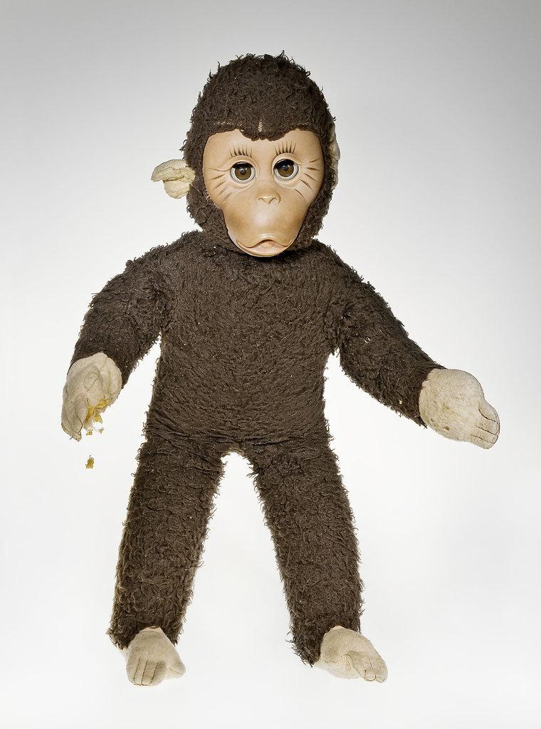 Affe, Alter unbekannt